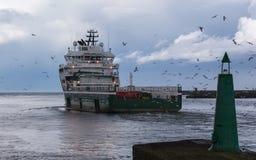 Versorgungsschiff und Fütterungsmöven Lizenzfreies Stockbild