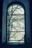 Versperde poort aan de winterlandschap Stock Afbeeldingen