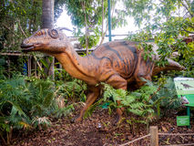 Verstecken in einer Busch tsintaosaurus Schaufensterpuppe in Perth-Zoo Stockfotos