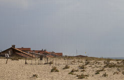 Verstecken im Sand Stockbilder