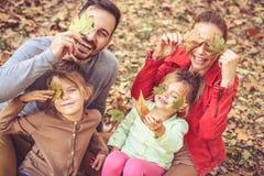 Verstecken Sie sich mit Fallblättern und gelangen Sie Haltungen an Kamera Familien-Zeit lizenzfreies stockbild