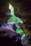 Versteckte Höhle, die einen Wald übersieht Lizenzfreie Stockfotografie