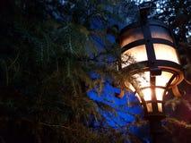 Versteckte Lampe Lizenzfreies Stockfoto