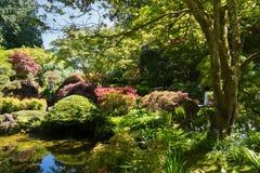 Versteckter grüner See in butchart Gärten Vancouver-Insel stockfoto