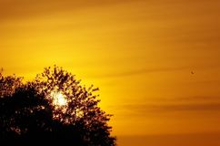Versteckter Sonnenuntergang Lizenzfreie Stockfotos