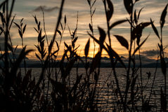Versteckter Sonnenuntergang Stockbild