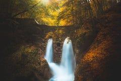 Versteckter Wasserfall in einem mystischen Wald stockbilder