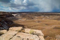 Versteinerte Forest National Park Lizenzfreies Stockbild