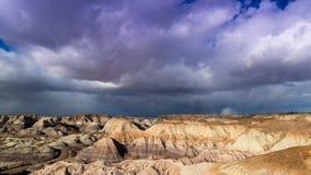 Versteinerte Forest National Park Lizenzfreie Stockfotografie