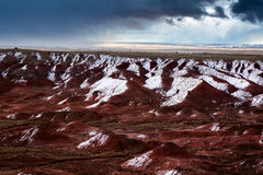 Versteinerte Forest National Park Stockfotografie