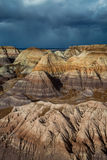 Versteinerte Forest National Park Lizenzfreies Stockfoto