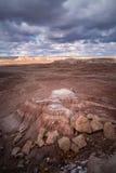 Versteinerte Forest National Park Stockfotos