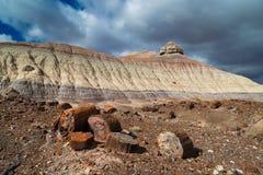 Versteinerte Forest National Park Stockfoto