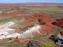 Versteinerte Forest National Park-Landschaft, Arizona, USA lizenzfreies stockbild