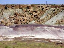 Versteinerte Forest National Park-Landschaft, Arizona, USA stockfotos