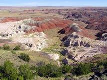 Versteinerte Forest National Park-Landschaft, Arizona, USA stockfoto