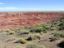 Versteinerte Forest National Park-Landschaft, Arizona, USA lizenzfreie stockfotos