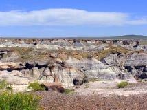 Versteinerter Forest National Park, Arizona, USA stockbilder