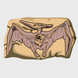 Versteinerter Pterodaktylusdruck auf dem Stein lizenzfreie abbildung