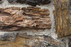 Versteinertes Holz benutzt als Steinwand lizenzfreies stockbild