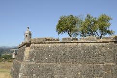 Versterkte muren en bomen Stock Afbeelding