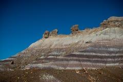 Verstijfd van angst Bos Beroemd punt op Route 66 royalty-vrije stock afbeeldingen