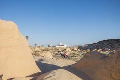 Verstijfde van angst duinen Stock Fotografie