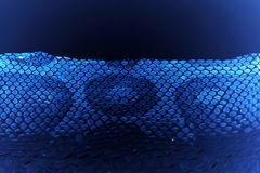 verstoßene Haut der Jacke Schlange königlicher Pythonschlange auf einem weißen Hintergrund Computerverarbeitung, Umstellung stockbilder
