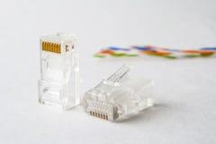 Verstopfen Sie, um das Internet anzuschließen Stecker RJ45 Lizenzfreie Stockfotos