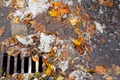 Verstopfter Abwasserkanal blockt Regenwasserabfluß Lizenzfreie Stockfotos