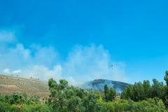 Versuch, Feuer in Sardinien Italien abzufeuern Stockfoto