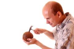 versuchen Sie, Kokosnuss zu öffnen Stockfotografie