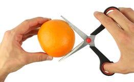 Versuchen Sie, orange Frucht durch Scheren zu schneiden Stockfoto