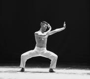 Versuchen Sie, Verständnis von Chan - Schrei-modernen Tanz zu erreichen Lizenzfreie Stockfotografie