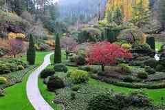 Versunkener Garten des Herbstes Stockfoto