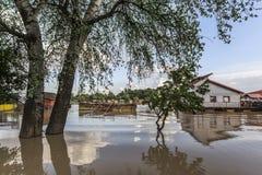 Översvämmat land med att sväva hus på Sava River - Royaltyfria Bilder