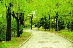 Vert Photos stock