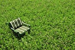 Vert Photos libres de droits