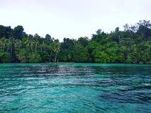 Vert d'île Images stock