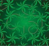 Vert d'arbre de noix de coco de nature de feuille d'ornement de conception de modèle de fond Photos stock