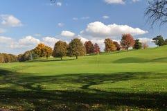 Vert d'automne Photographie stock libre de droits