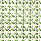 Vert d'automne de belle offre lumineuse de graphique et y floraux de fines herbes Photo stock