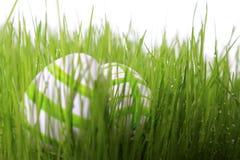 Vert d'oeufs de pâques Image libre de droits