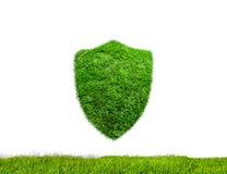 Vert de bouclier Images libres de droits