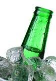 vert de bouteille à bière Images libres de droits