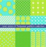 Vert de chaux et collection de modèle de turquoise Dirigez la texture, copie, papier illustration de vecteur