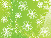 vert de fleurs Photo stock