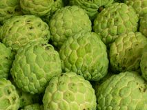 Vert de fruit Photographie stock