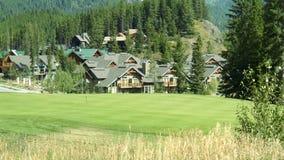 Vert de golf photos stock