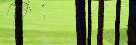 Vert de golf Images libres de droits